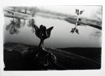 8. Jasenovac I
